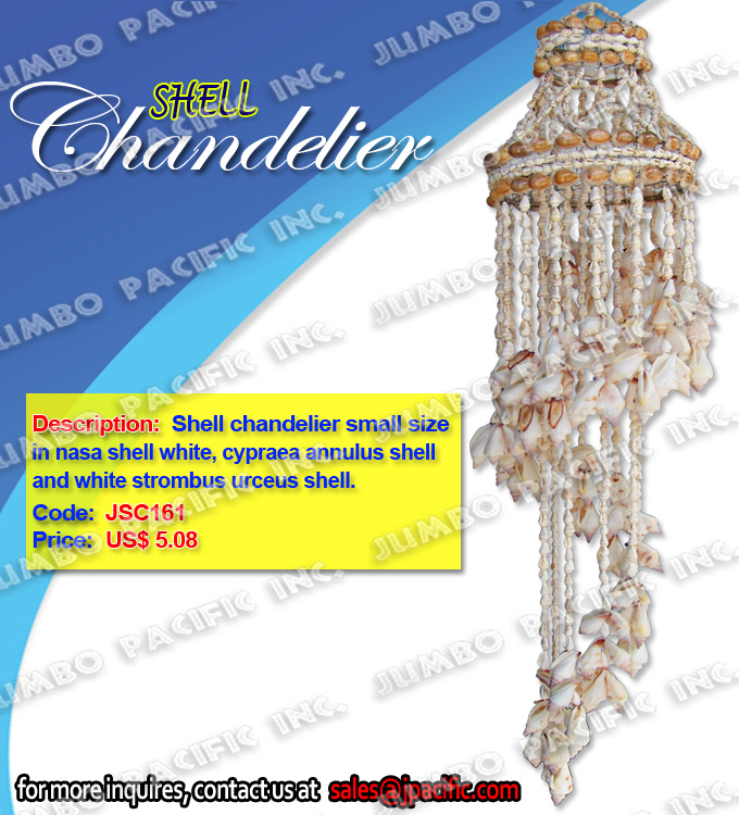 Shell Chandelier small size in nasa shell white, white strombus urceus shell