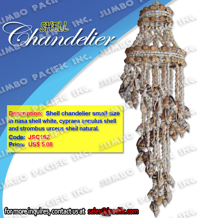 Shell Chandelier small size in nasa shell white, strombus urceus shell