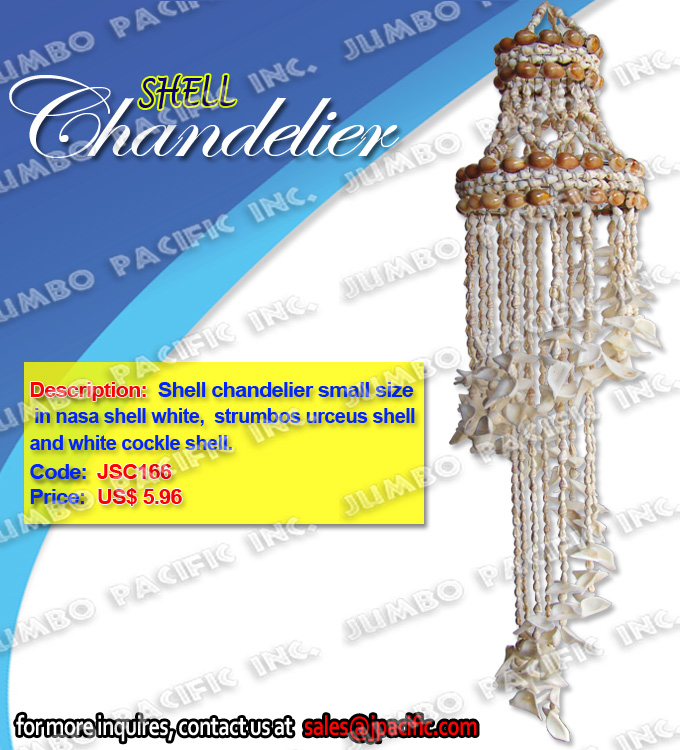 Shell Chandelier small size in nasa shell white, white cockle shell
